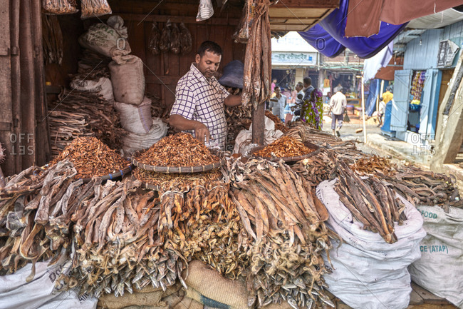 Rangamati, Bangladesh; May 5, 2013: Vendor selling fish caught in the Kaptai Lake at the Rangamati Fish Market