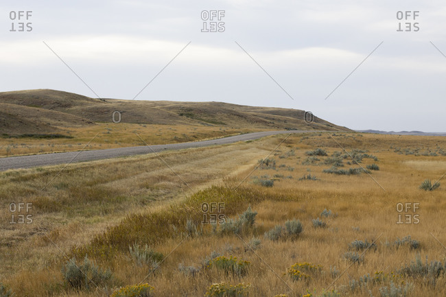 Road amongst rolling hills during golden hour at Grasslands National Park, Canada