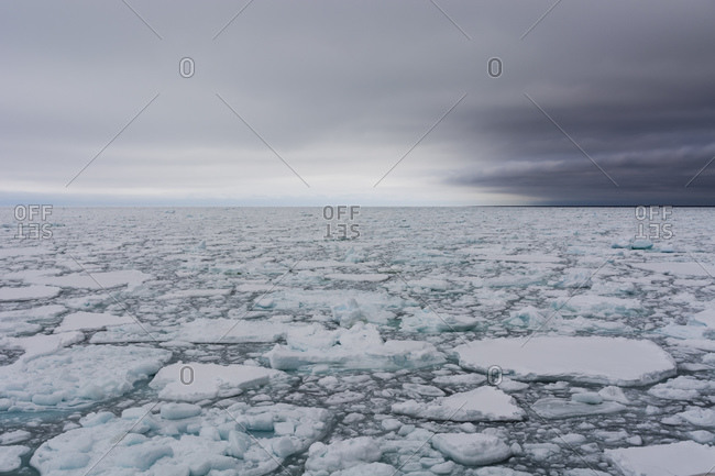 Floating pieces of pack ice, Polar Ice Cap, 81north of Spitsbergen, Norway