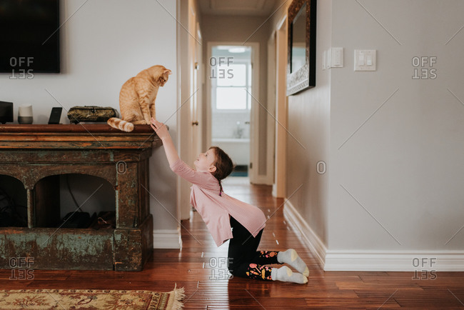 Girl playing with cat at home