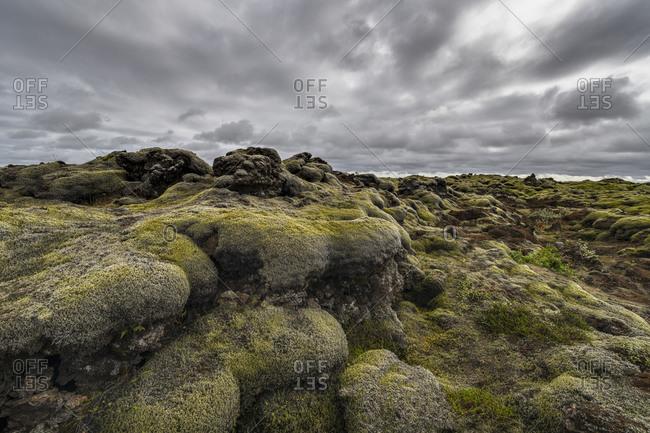 Europe, Iceland, South Iceland, Icelandic moss landscape
