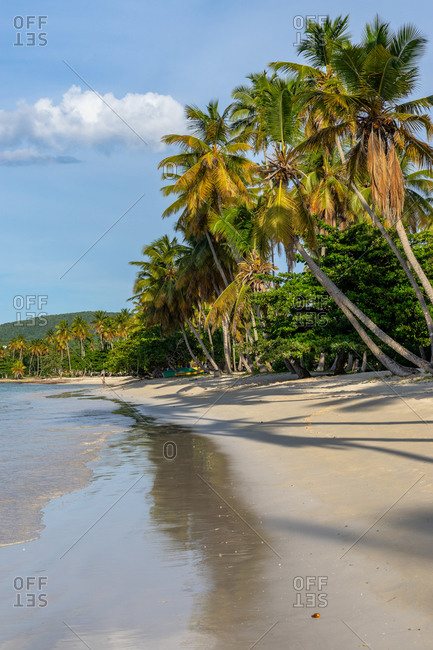 Caribbean, Greater Antilles, Dominican Republic, Samana, Las Galeras, Playa Grande beach in Las Galeras