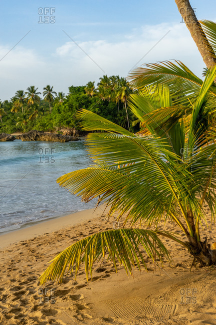 America, Caribbean, Greater Antilles, Dominican Republic, Samana, Las Terrenas, view of Playa Bonita beach