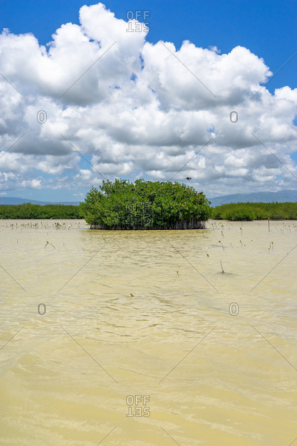 America, Caribbean, Greater Antilles, Dominican Republic, Oviedo, Laguna de Oviedo, Small island in the saltwater lake Laguna de Oviedo