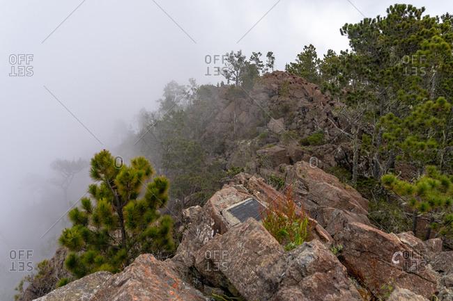 August 18, 2019: Greater Antilles, Dominican Republic, Jarabacoa, Manabao, Parque Nacional Jose Armando Bermudez, Pico Duarte, view from the summit of Pico Duarte over the summit ridge in the fog