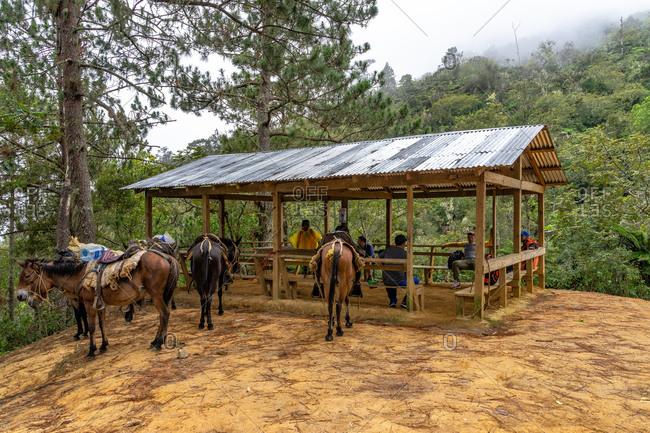 Greater Antilles, Dominican Republic, Jarabacoa, Manabao, Parque Nacional Jose Armando Bermudez, Pico Duarte, Easy break place La Laguna ascending to Pico Duarte