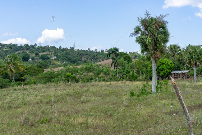 Greater Antilles, Dominican Republic, Santiago, Rural area near Santiago de los 30 Caballeros