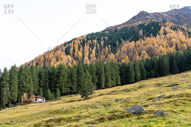 Europe, Austria, Tyrol, Stubai Alps, Sellrain, St. Sigmund im Sellrain, hunting lodge in front of the autumnal mountain forest in Sellraintal in the Stubai Alps