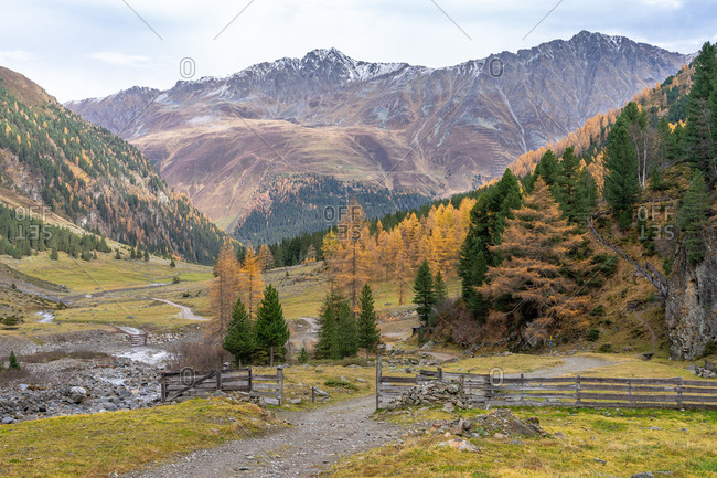 Europe, Austria, Tyrol, Stubai Alps, Sellrain, St. Sigmund im Sellrain, looking down through the autumn colored Gleirschtal