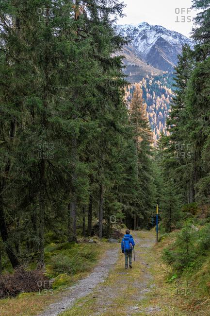 November 1, 2019: Europe, Austria, Tyrol, Stubai Alps, Sellrain, St. Sigmund im Sellrain, boy hikes on a forest path through the autumnal mountain forest in Sellrain