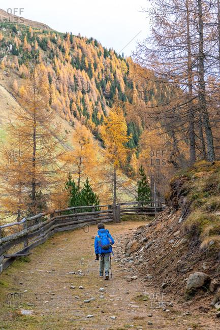November 1, 2019: Europe, Austria, Tyrol, Stubai Alps, Sellrain, St. Sigmund im Sellrain, boy hikes on a forest path in autumnal Sellrain