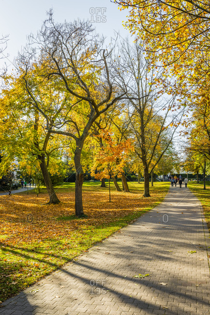 Spa park in Bad Durkheim, colorful autumn colors against the light,