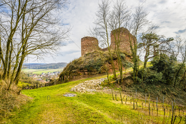 Castro Weitersheim, castle ruins Gutenburg, near Gutenberg, vineyard around the castle hill