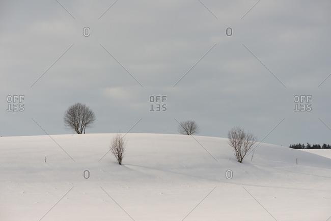 Winter landscape in Chiemgau, Bavaria