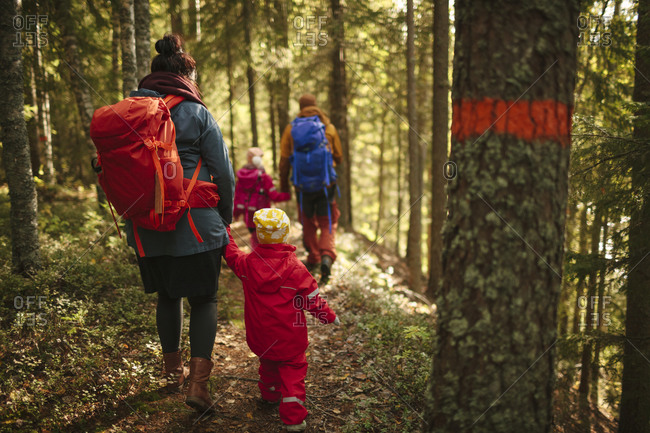 Family walking through a forest