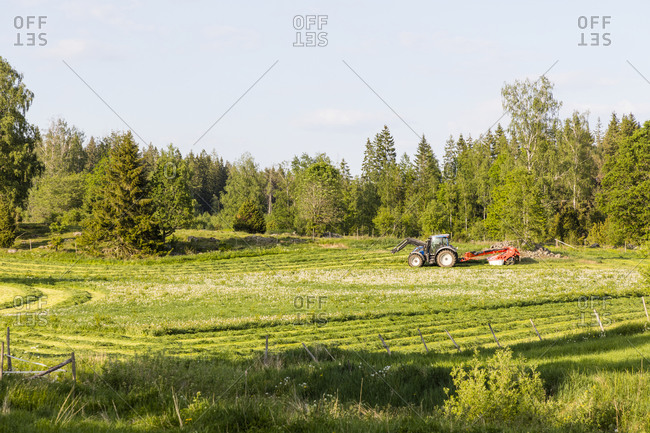 Tractor mowing grass on meadow