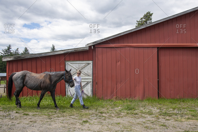 A young woman leads a horse in front of a red stable before a trail ride in Merritt, British Columbia