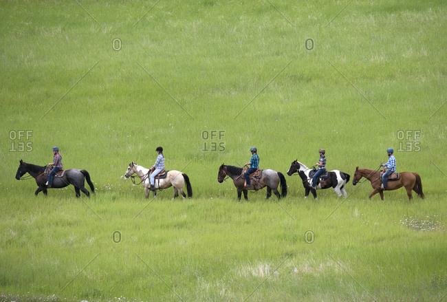 Trail riders on horses in a green field, Merritt, BC