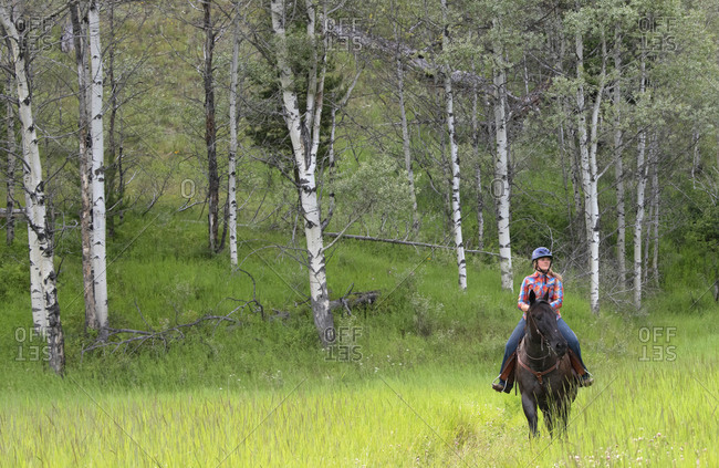 Trail rider on a horse in a green field in Merritt, BC