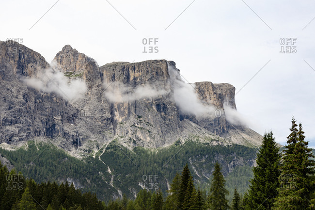 Magnificent Dolomites mountain range located near coniferous forest on cloudy gray day in Italy
