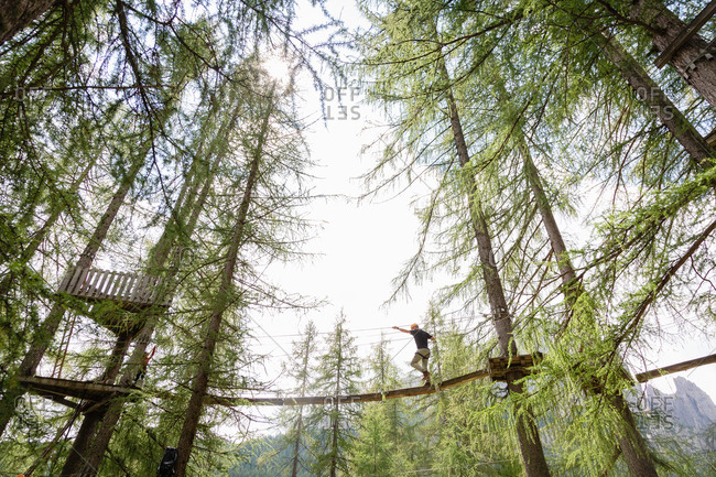 From below anonymous male walking on ropes course in adventure park in coniferous forest in Dolomites mountains in Italy
