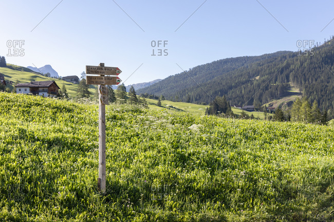 Sign with wooden pointers located on grassy hill slope near village in Val Badia valley on sunny summer day in Dolomites mountains in Italy