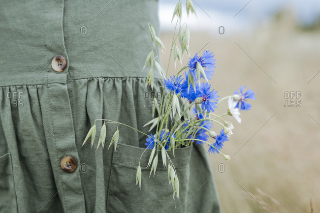 Bouquet of blue flowers and oat in the pocket of green dress
