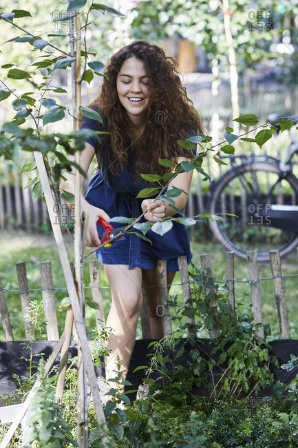 Young woman pruning twig in garden