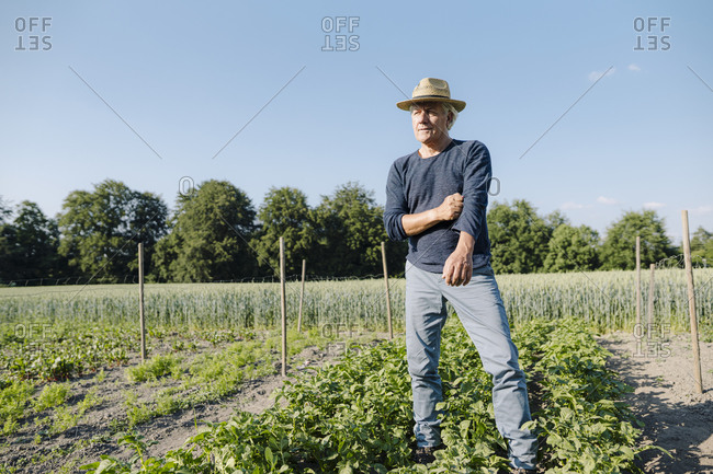 Thoughtful man looking away while standing against clear blue sky in agricultural field