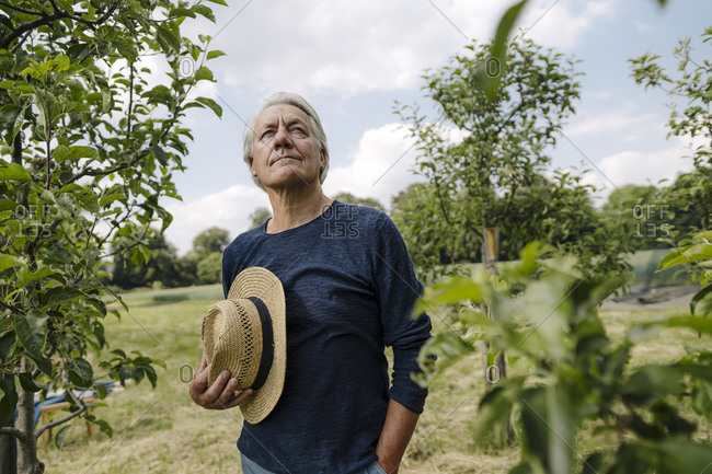 Man holding hat looking away while standing against sky in field