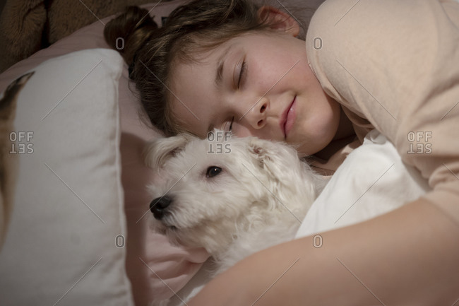 Cute girl holding dog while sleeping in bedroom