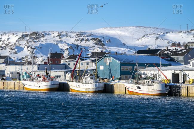March 4, 2020: Fishing boats in the port- Berlevag- Varanger peninsula- Finnmark- Norway