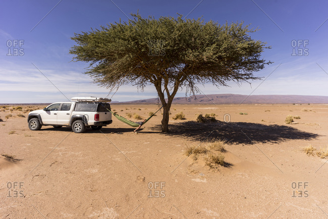 Man resting in hammock hanging between lone desert tree and off-road car