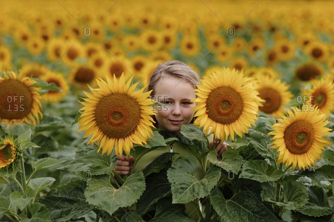 Cute girl hiding amidst sunflower field during summer