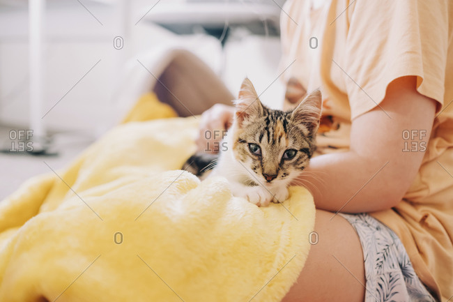 Kitten lying on young girl in her bedroom