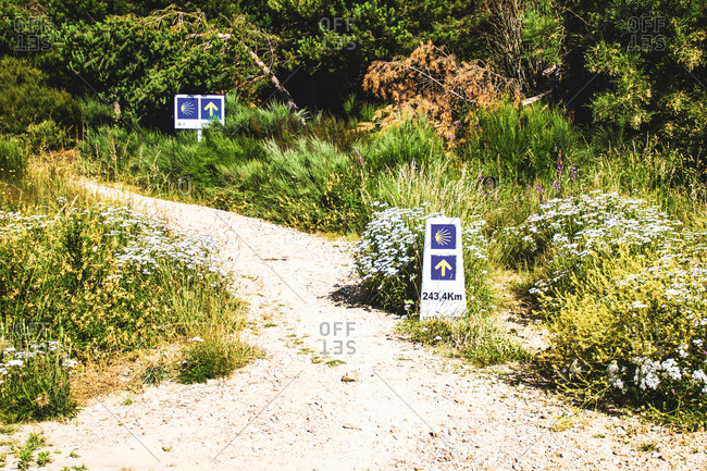 Arrow and shell of the camino de santiago indicating the way