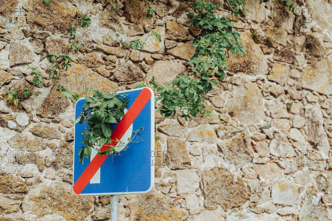 Traffic sign with vegetation over, against wall of medieval town