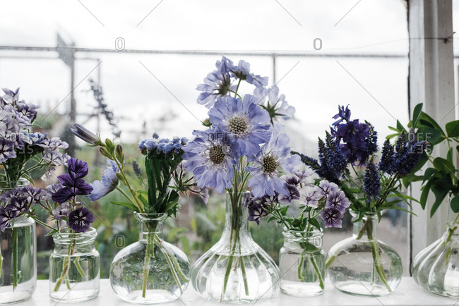 Freshly picked flowers in vases on a window sill in summer