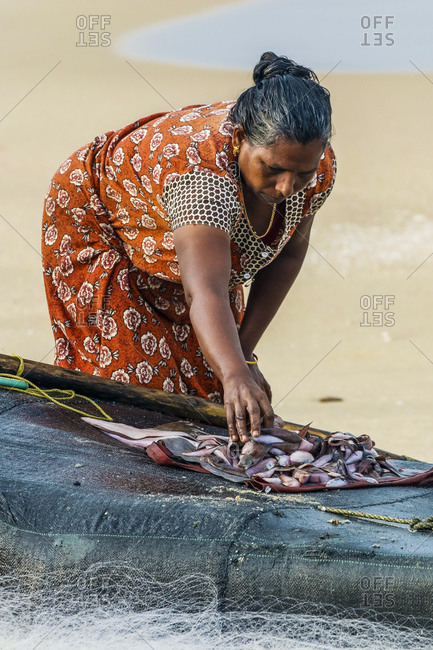 October 17, 2017: Woman sorting small fish on simple fishing raft at popular Marari Beach, Mararikulam, Alappuzha (Alleppey), Kerala, India, Asia