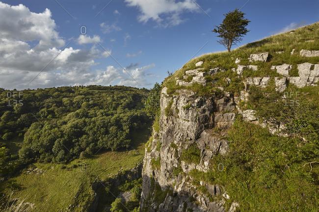 The limestone cliffs of Cheddar Gorge, in the Mendip Hills, near Cheddar, Somerset, England, United Kingdom, Europe