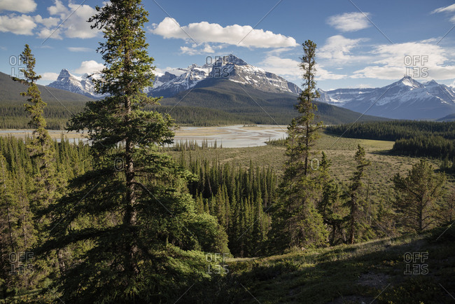 River Valley and Mount Sarback, Banff National Park, UNESCO World Heritage Site, Alberta, Canadian Rockies, Canada, North America