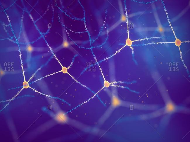Pyramidal neurons, illustration. Also known as pyramidal cells.