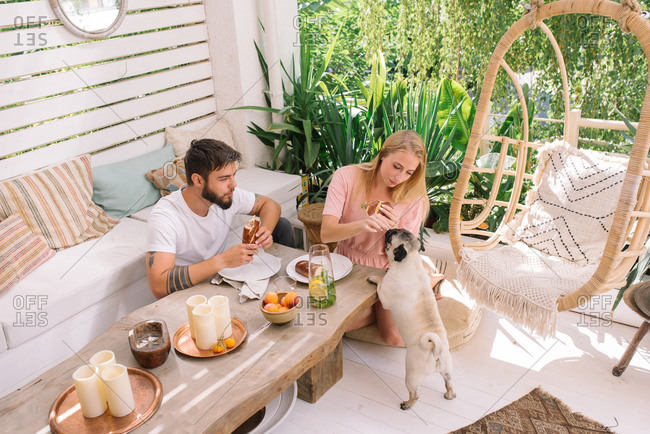 Young couple having breakfast with dog in their beautiful boho style apartment