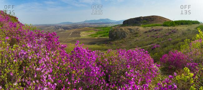 Heilongjiang province jiamusi group wins township geological park