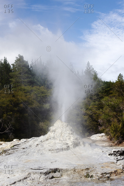 Geyser and volcanic rocks, Rotorua, Auckland, New Zealand