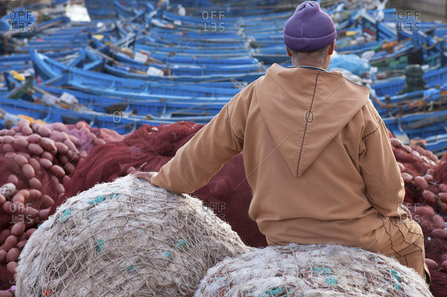 Local man sitting at fishing port, rear view, Essauira, Morocco