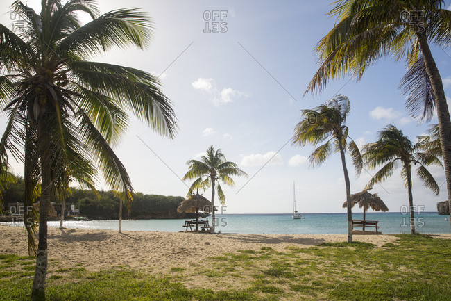 Beach umbrellas and palm trees on Santa Cruz beach, Curacao, Caribbean