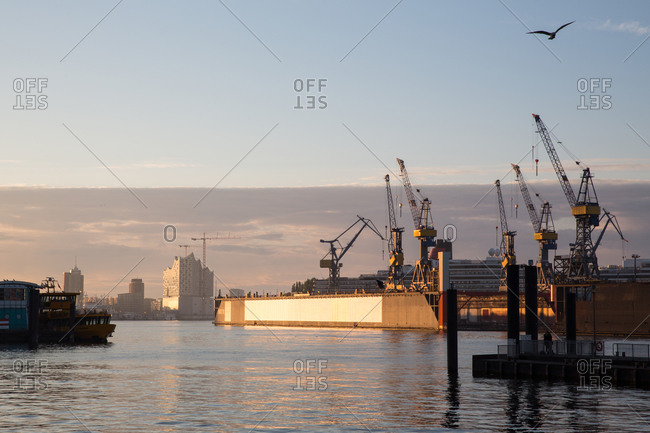 View of harbor cranes at sunset, Hamburg, Germany