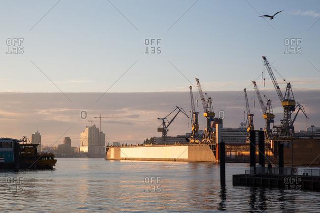 View of harbor cranes at sunset, Hamburg, Germany