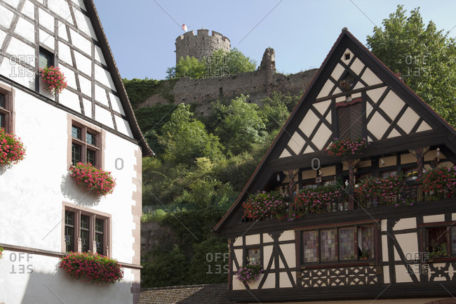 Medieval houses and castle ruins in background, Kaysersberg, Alsace, France